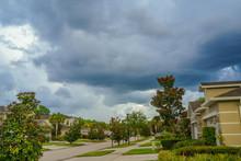 House Magnolia Denudata Tree, And Thunder Storm, Taken In Florida