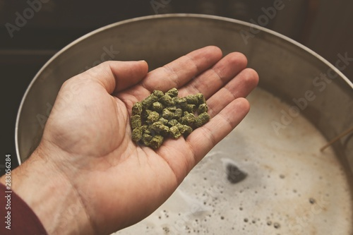 Brewing craft beer in a kitchen. Home brewing concept image. Wallpaper Mural