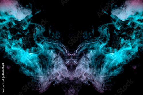 Obrazy smoki a-mystical-image-of-a-creature-animal-or-ghost-with-wings-and-a-beak-of-green-and-pink-smoke-on-a-black-isolated-background-print-for-clothes