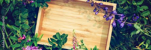 Kreatywnie zielony kwiecisty tło od naturalnych roślin. Baner rama papier pakowy