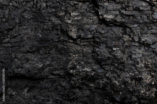 Dark texture of black color. Wallpaper Mural