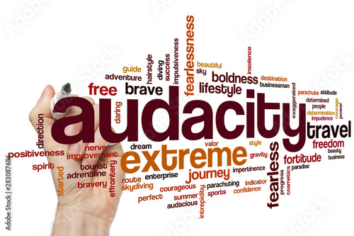 Audacity word cloud Wallpaper Mural