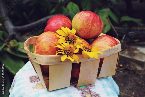Harvest of red apples in a basket Slika na platnu