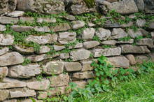 Old Rustic Stone Brick Wall With Green Moss, Texture Background