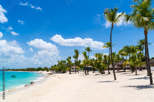 Beach with Palm Trees at Catalina Island in Dominican republic