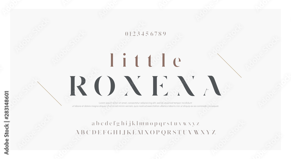 Fototapety, obrazy: Elegant alphabet letters font set. Classic Custom Lettering Designs for logo, Poster. Typography fonts classic style, regular uppercase, lowercase and number. vector illustration
