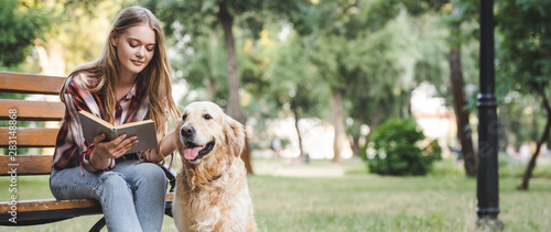 panoramic shot of beautiful girl in casual clothes reading book and petting golden retriever while sitting on wooden bench - 283148868