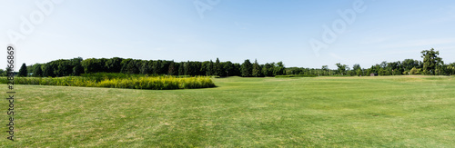 panoramic shot of blue sky in green park with trees in summertime - 283166869