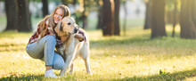 Panoramic Shot Of Beautiful Young Girl In Casual Clothes Hugging Golden Retriever While Sitting On Meadow In Sunlight