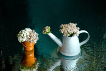 Little Pink Flowers In A Toy Watering Can And A Small Toy Bucket