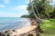 Himmlischer Strand auf Corn Island in Nicaragua