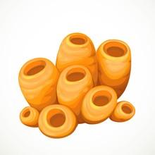Orange Sponges Sea Life Object...