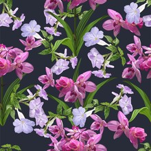 Purple Trumpet Vine And Orchid Flower Seamless Pattern Vector Illustration