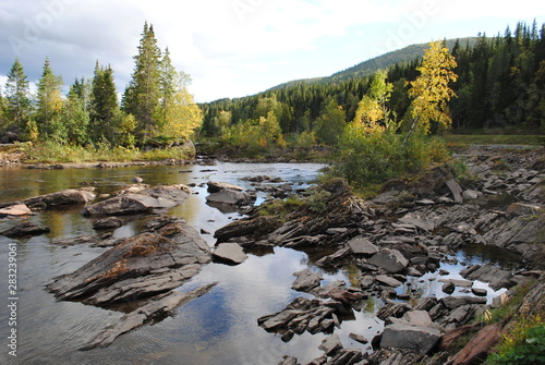 Fototapety, obrazy: River with stones and trees at the sides