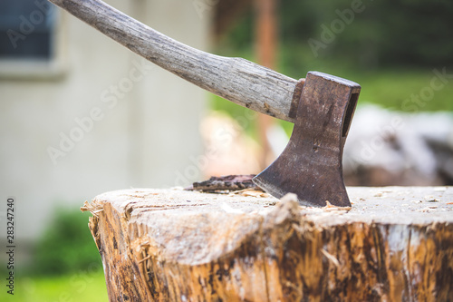 Cadres-photo bureau Jardin Getting wood for fire: axe attached to a tree trunk