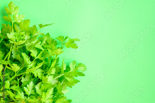 Bunch of parsley on a green background Fototapet