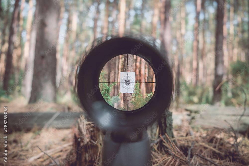 Fototapety, obrazy: Sniper gun scope view, target