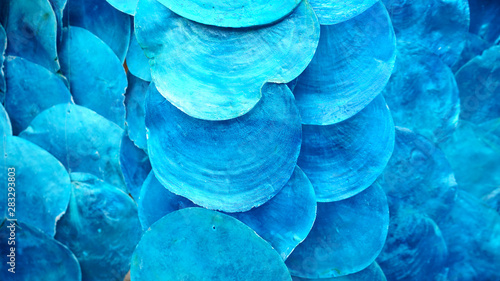 Door stickers Macro photography BLUE shell use decoration in wall and mobile