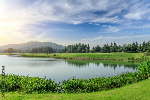 Fototapeta Green grass and woods with lake under blue sky obraz na płótnie