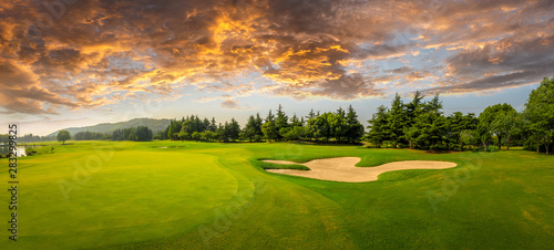 Fotografija Green grass and woods on a golf field