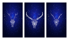 Vector Set Of Three Illustrations With Silhouettes Skulls Roe Deer, Wild Buffalo And Goat On Blue Starry Sky Background.