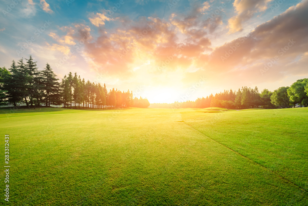 Fototapety, obrazy: Green grass and forest with beautiful clouds at sunset