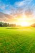 Leinwandbild Motiv Green grass and forest with beautiful clouds at sunset