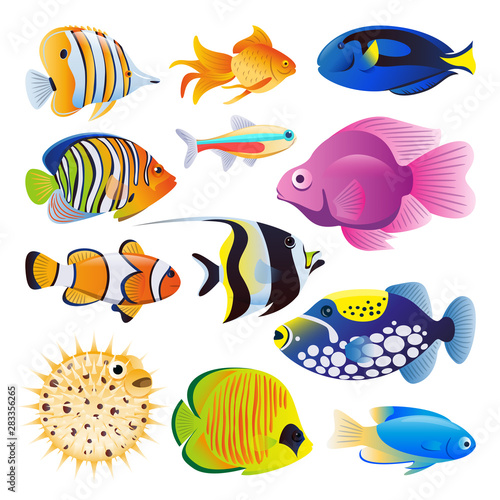 Cuadros en Lienzo Sea fishes vector flat cartoon illustration