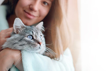 Beautiful Woman At Home Holding And Hug Her Lovely Fluffy Cat. Gray Tabby Cute Kitten With Blue Eyes. Friend Of Human. Good Sunny Morning.