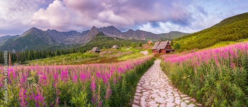 mountain landscape, Tatra mountains panorama, Poland colorful flowers and cottages in Gasienicowa valley (Hala Gasienicowa), summer - 283366886