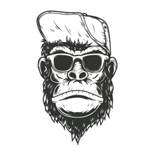 Illustration Of Gorilla Monkey...