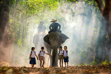 Mahout And Student Little Asia...