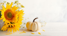 Autumn Still Life With Sunflowers And White Pumpkin..Autumn Arrangement On A White Wooden Table.