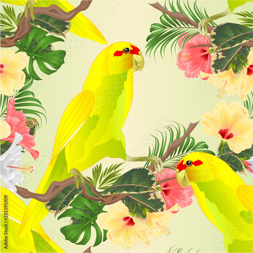 Fotobehang Papegaai Seamless texture Bird Indian Ringneck Parrot in Yellow on branch with tropical flowers hibiscus, palm,philodendron watercolor vintage vector illustration editable Hand draw