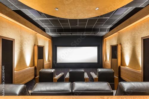 Valokuva  Stunning stylish privat theater