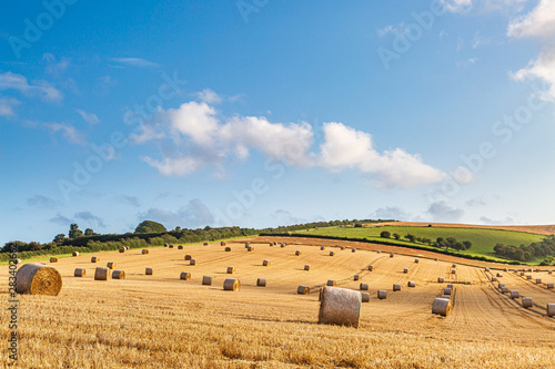 An idyllic countryside view, with hay bales in a field in the summer sunshine Wallpaper Mural