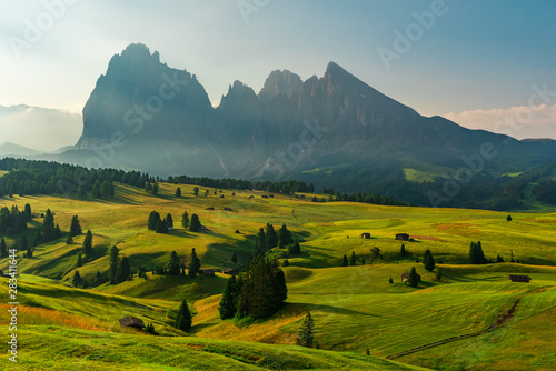 Foto  Alpe di Siusi or Seiser Alm with Sassolungo or Langkofel mountain group in backg