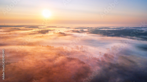 Carta da parati Summer sunrise and morning fog over woodland aerial panorama