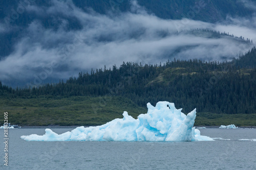 Spoed Foto op Canvas Poolcirkel Iceberg in front of rolling fog in the Prince William Sound of Alaska.