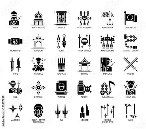 Obraz na plátne  Ninja Elements , Glyph Icons