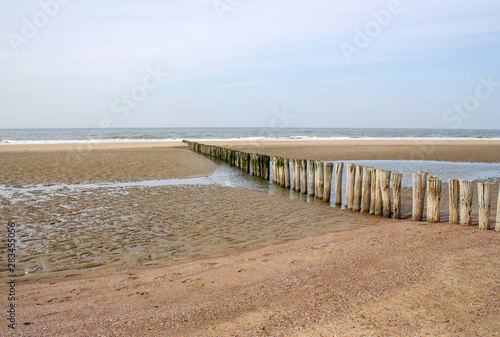 Fototapety, obrazy: Wave breaker made of wooden stakes on the beach, Renesse, Netherlands