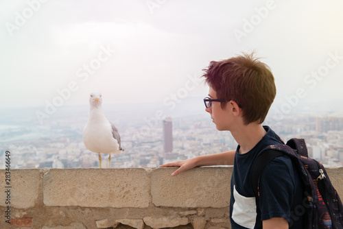 Valokuvatapetti Handsome teen boy and albatross over background of panorama of Alicante (Spain)