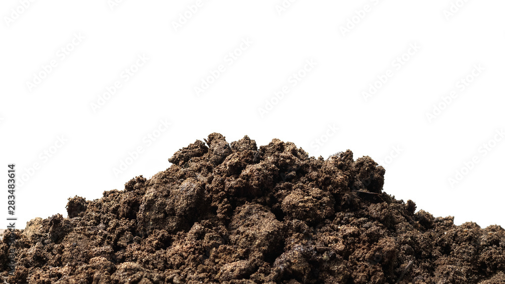 Fototapeta Pile of soil isolated on pure white background with ground suitable for growing plants or gardening. Natural soil piles filled with good minerals or natural pH.