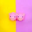 Leinwandbild Motiv Rubber Toys Piglets on colorfull background. Minimal flat lay art
