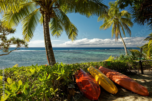 Cuadros en Lienzo  Tropical island holiday, a beach with palm trees on the south pacific island of Tonga