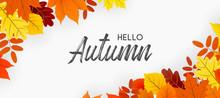 Hello Autumn Falling Leaves. A...