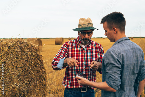 Fotomural  two agronomist workers talking outdoor on cultivated wheat field