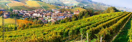 Autumn scenery, Vineyards in contryside of Piedmont, Barolo village and castle. Italy