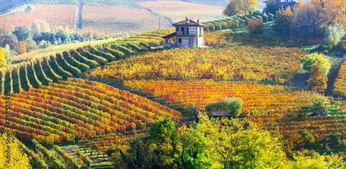 Picturesque countryside of Piedmont with yellow vineyards and small villages. wine region of Northen Italy