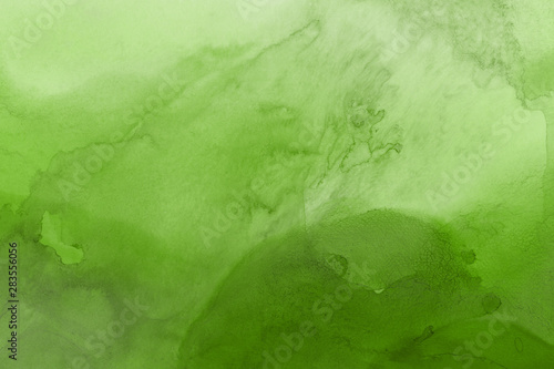 Obraz Hand painted alcohol ink background. Abstract delicate green texture. Contemporary wallpaper.  - fototapety do salonu